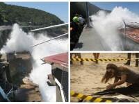 Doi morti dupa ce o pista pentru biciclete construita la Rio de Janeiro s-a prabusit. Imaginile surprinse dupa tragedie