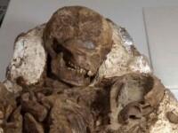 Descoperire extraordinara in Taiwan. Ce au observat arheologii cand au examinat cea mai veche fosila umana din lume