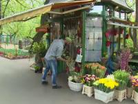 Surpriza de 4.000 de euro pregatita oradenilor de Paste de un florar.