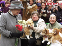Regina Elisabeta, întristată de moartea câinelui ei, Willow