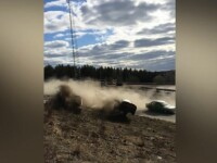 O mașină a intrat în mulțime în Suedia. Sunt cinci răniți