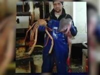 Prăbușirea industriei piscicole. Pescarii pleacă la salarii de zeci de ori mai mari afară