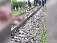 Un tren a lovit mortal mai multe vaci lăsate la păscut