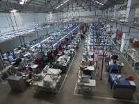 800.000 de contracte de muncă, afectate în România de criza COVID 19. Planul Comisiei Europene