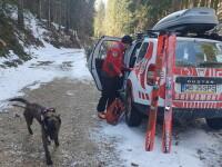 Doi turişti au fost atacaţi de urs în Munţii Călimani, unul dintre ei fiind grav rănit