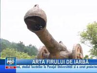 Artă şi natură. Un clujean sculptează în fân!