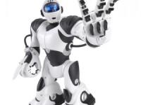 Robotul, cel mai bun prieten al bolnavilor