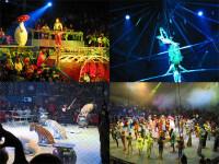 Un numar de acrobtie la inaltime a dat emotii angajatilor de la circ