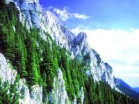 Tone de stanca s-au pravalit pe sosea dupa ce un versant din munte a fost aruncat in aer
