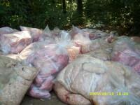 Focar de infectie! Carne stricata aruncata la marginea soselei
