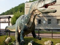 Dinozaur in marime naturala, confectionat dintr-o imensa foaie de hartie!