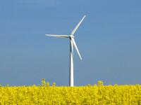 Romania va avea cel mai mare parc de eoliene din Europa!