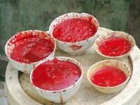 Crezi ca ai testat toate delicatesele? Ce zici de supa de liliac?