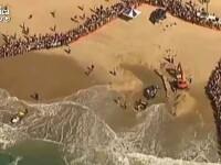 Pui de balena esuat pe o plaja din Australia, salvat de zeci de oameni. VIDEO