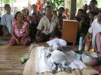 Cea mai ciudata creatura din lume, descoperita in Thailanda. Cercetatorii sunt bulversati. FOTO