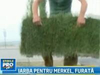 La Chisinau s-a furat covorul de iarba care trebuia sa o impresioneze pe Angela Merkel