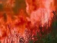 150 de mii de lei, paguba fermierului din Iclod caruia i-a ars hambarul cu lucerna