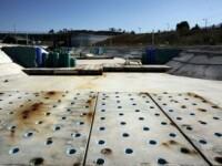 Arenele aflate in paragina la 8 ani de la Jocurile Olimpice din Atena GALERIE FOTO