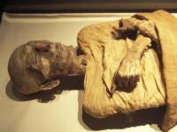 Un mormant si mumia sa veche de 5.600 de ani, descoperite in Egipt
