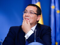 Ponta: Problema cainilor fara stapan e grava; legea e in Parlament; sper sa se gaseasca solutia