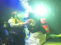 Casatorie printre rechini. Doi tineri din Statele Unite au facut nunta intr-un bazin imens