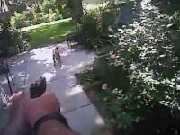 Un politist american a impuscat mortal cainele unei pensionare. Barbatul verifica proprietatea de hoti. VIDEO