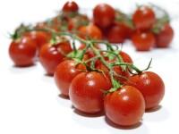 Cele mai bogate tari din lume vor sa importe produse agro-alimentare din Romania. Decizia autoritatilor de la Bucuresti