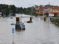 Imagini macabre, dupa ploile de proportii istorice din Louisiana. Un cimitir a fost inundat, iar sicriele pluteau pe ape