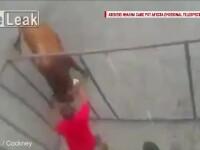 Credea ca e in siguranta in cusca si l-a provocat pe taur sa il atace. Greseala imensa facuta de un spaniol