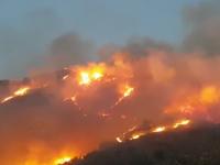 Incendii devastatoare în Europa. Macedonia a declarat stare de urgență