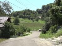 """Primarii din sate și comune, învinși de tânțari. """"Ne-au prins un pic nepregătiți"""""""