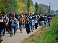 Doi refugiaţi sirieni au murit în circumstanţe stranii într-o pădure din Croaţia