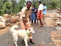 Un câine a salvat o familie întreagă de la moarte. Situația imposibilă din care a ieșit