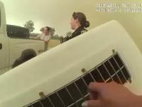 Incendiile din California. Povestea polițistei care și-a riscat viața, ca să salveze animalele dintr-un adăpost