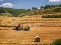Ce despăgubiri vor primi fermierii care au avut pierderi cauzate de secetă