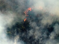 Preşedintele Braziliei vrea să trimită armata pentru a stinge incendiile de pe Amazon
