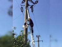 Pompierii, chemați pentru a salva o barză prinsă în firele de electricitate. Ce s-a întâmplat