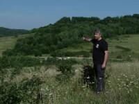 România pierde anual sute de hectare de pășuni și fânețe pe care cresc copaci