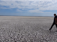 Un lac din Delta Dunării a secat în mai puțin de 2 luni. Cum a fost posibil