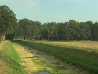 Seceta face ravagii în Europa. Un râu din Germania a secat pe porțiuni întinse