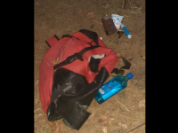 Un urs i-a furat rucsacul unui turist, lângă Lacul Sfânta Ana. Ce i-a luat din el