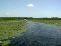 Creșterea uriașă de turiști în Delta Dunării a adus și multe gunoaie în zonă