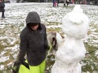 VIDEO: Ninsoare în mijlocul lunii august. Copiii din oraș fac oameni de zăpadă