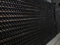 Vinul românesc va avea o calitate superioară în acest an. Care este motivul