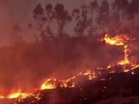 Week-end de foc în Europa. Incendiile au mistuit zone întregi din Spania și Italia