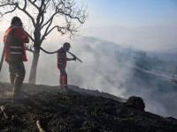 Incendiile au devastat sate întregi din sud-vestul Turciei. Alertă și în Atena, Croația și Bulgaria