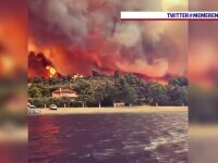 """Grecia nu scapă de teroarea incendiilor de vegetaţie. Româncă stabilită în Atena: """"Situaţia este dramatică"""""""