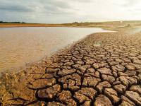 """Raportul experților ONU privind încălzirea globală este un """"Cod Roșu pentru omenire"""""""