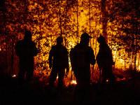 Incendiile forestiere extreme fac ravagii în centrul Rusiei