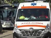 Un bărbat de 51 de ani a murit după ce un molid a căzut peste el, în Maramureș